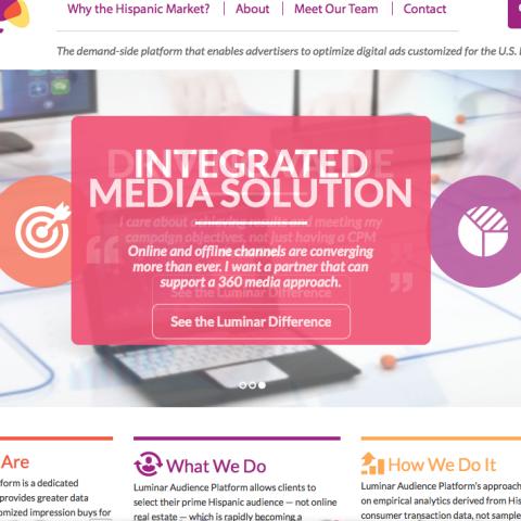 Luminar RAP B2B website