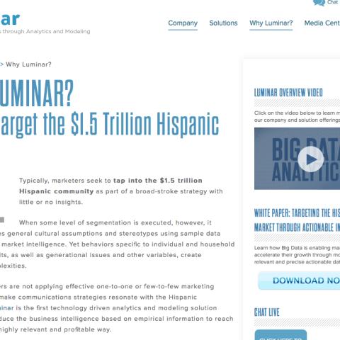 Luminar Insights B2B website