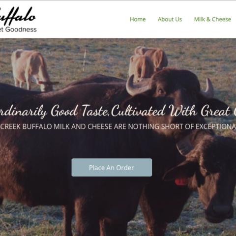 Mill Creek Buffalo website (millcreekbuffalo.com)